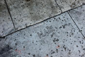 Earl Carroll Theatre, Hollywood: Hair sidewalk inscriptions
